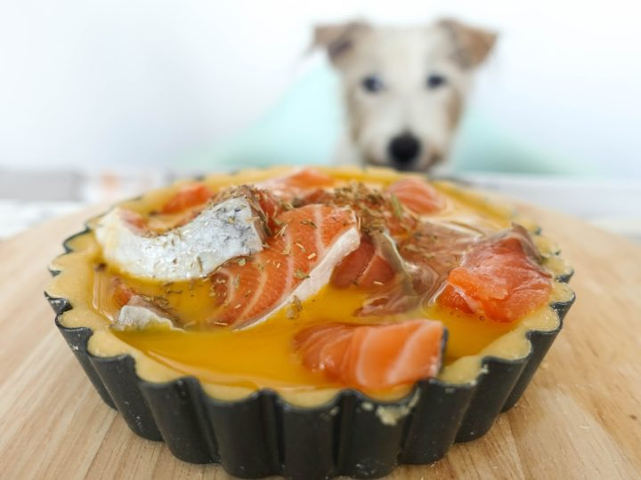 Fish Quiche for Dogs